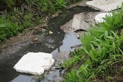Rzeczka Bukowa zamieniona w wysypisko śmieci