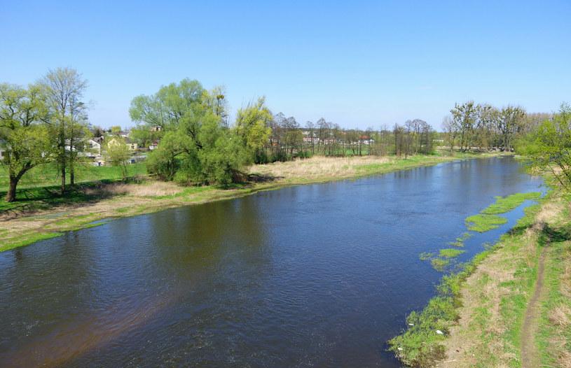 Rzeka Bzura /Marek BAZAK/East News /East News