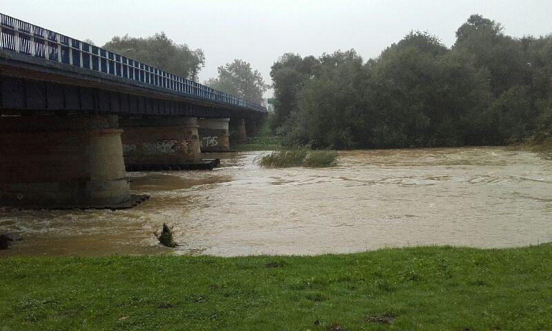 Rzeka Skawa w Wadowicach /Gorąca Linia RMF FM