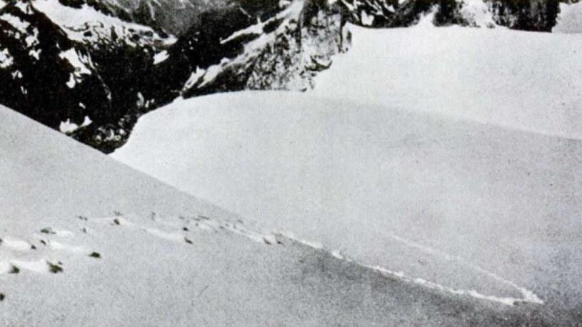 Rzekome ślady yeti uchwycone przez Franka Smythe w 1937 r. /materiały prasowe