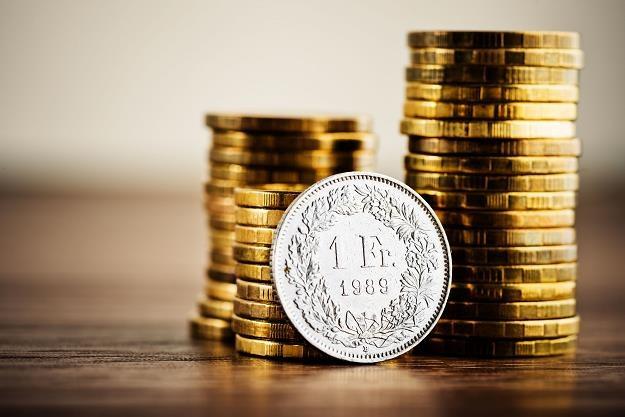 Sąd: Kredyt we franku nie jest kredytem w złotych /©123RF/PICSEL