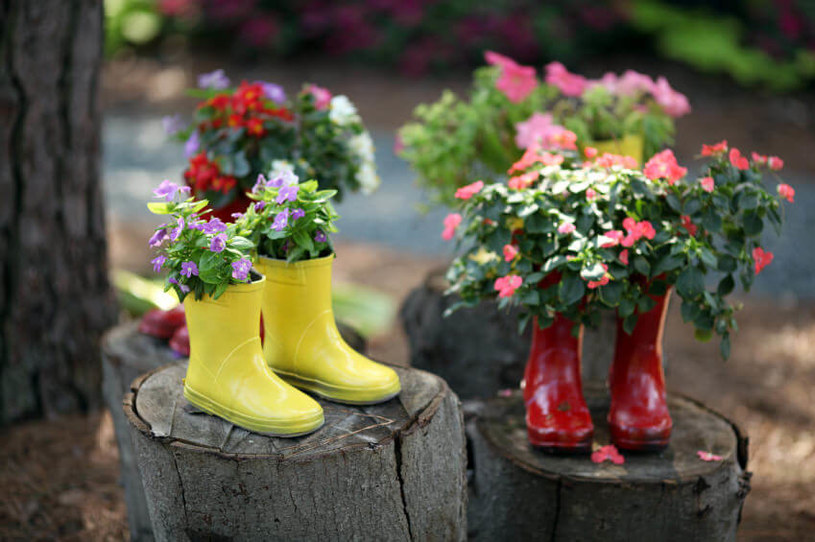 sadzenie kwiatów /© Photogenica