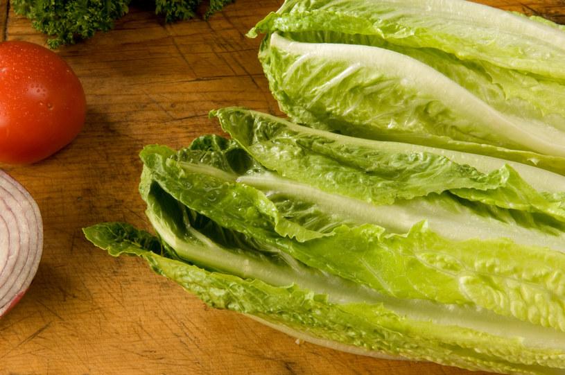 Sałata rzymska jest bardziej wytrzymała od masłowej i wiele zdrowsza od lodowej /shutterstock /Smaki Życia