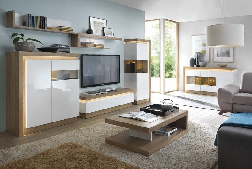 Salon jest najważniejszym miejscem w prawie każdym domu /materiał zewnętrzny