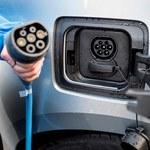 Samochód elektryczny we flocie firmowej może być tańszy niż spalinowy