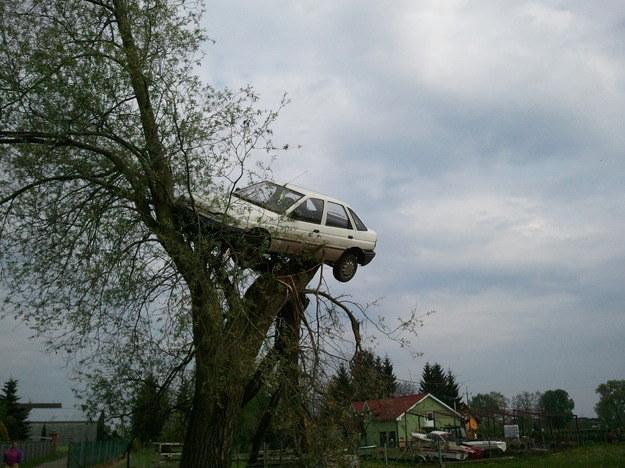 Samochód na drzewie. Zdjęcie dzięki uprzejmości mieszkańców Lubczyna /