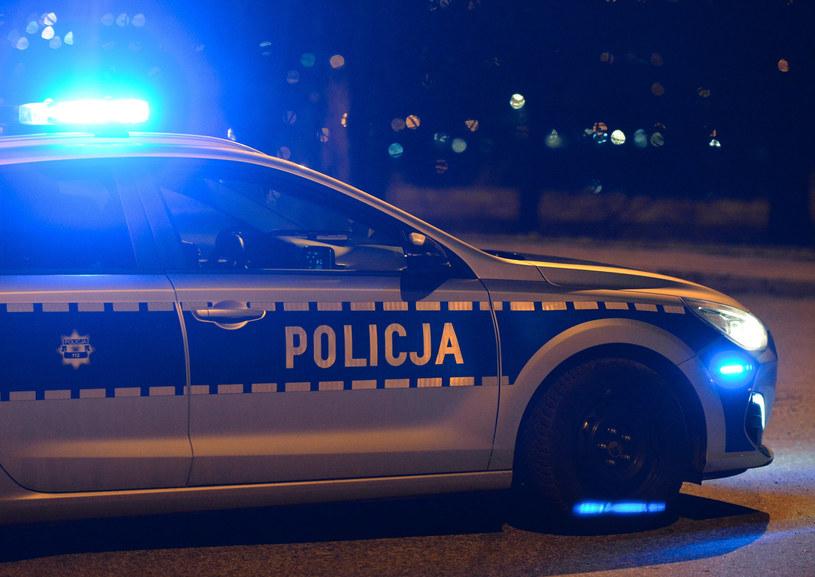 Samochód policyjny na sygnale, zdjęcie ilustracyjne /Lukasz Solski/ /East News