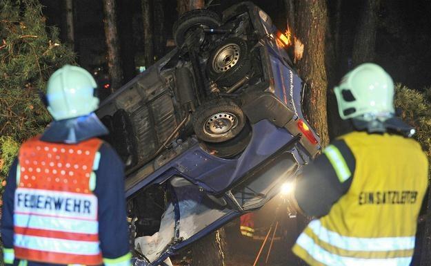 Samochód staranował trzy drzewa /PAP/EPA