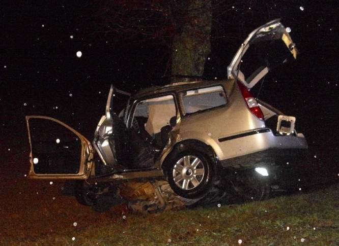 Samochód wypadł z drogi i uderzył w drzewo; źródło: kppspjedrzejow.eu /Internet