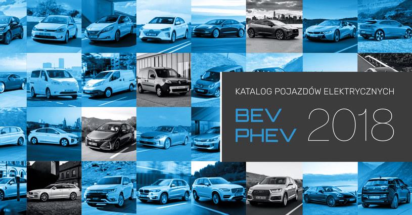 Samochody elektryczne dostępne w Polsce /INTERIA.PL/informacje prasowe