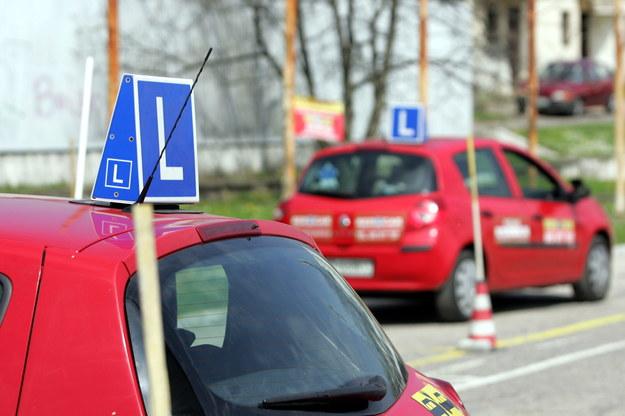 Samochody nauki jazdy w Poznaniu na placu manewrowym /Adam Ciereszko /PAP