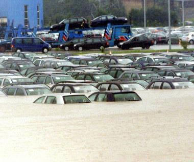 Samochody po powodzi. Są już w Polsce?