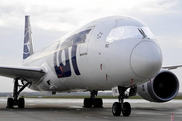 Samolot Boeing 787 Dreamliner w Porcie Lotniczym w Jasionce k. Rzeszowa /Darek Delmanowicz /PAP