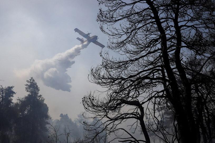 Samolot gaśniczy w akcji w pobliżu Aten /COSTAS BALTAS /© 2021 Reuters