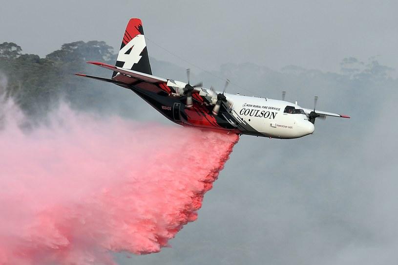 Samolot gaśniczy, walczący z ogniem w Australii /AFP