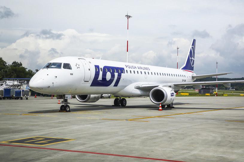Samolot PLL LOT, zdjęcie ilustracyjne /Beata Zawrzel /Reporter