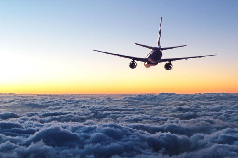Samolot; zdj. ilustracyjne /123RF/PICSEL