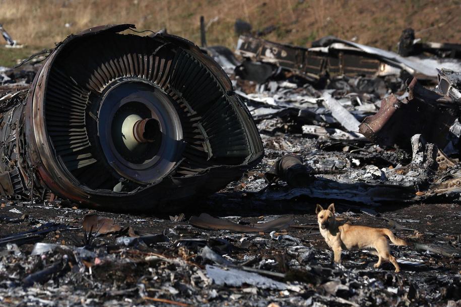 Samolot został zestrzelony nad Ukrainą 17 lipca 2014 roku /PAP/ITAR-TASS/Pochuyev Mikhail /