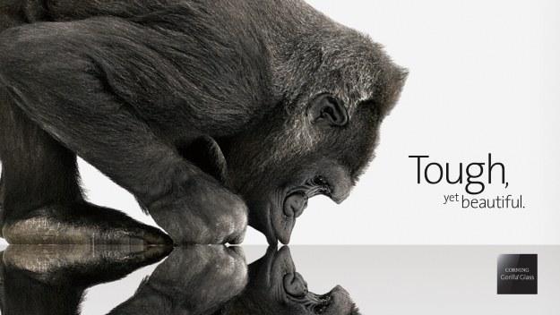 Samsung zrezygnuje z Gorilla Glass? /materiały prasowe