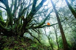 Sapiens w świecie bioróżnorodności