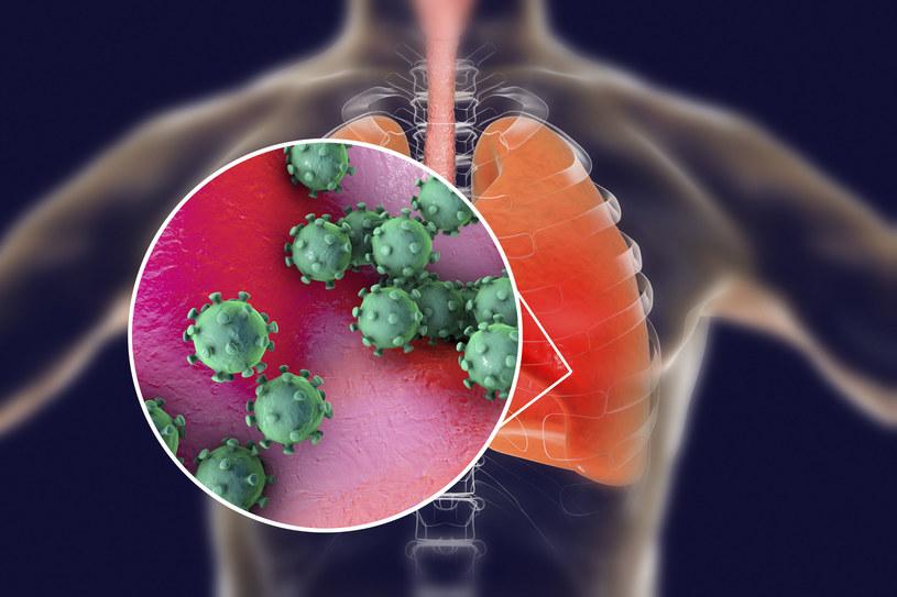 SARS-CoV-2 niektórych infekuje łatwiej niż innych /123RF/PICSEL
