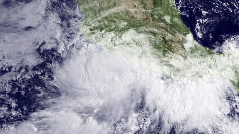 Satelitarne zdjęcie huraganu /AFP
