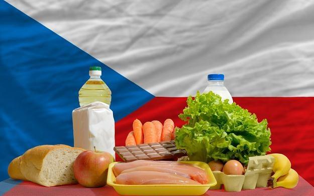 Sawicki: Czeska instrukcja jest niezgodna z prawem UE /©123RF/PICSEL