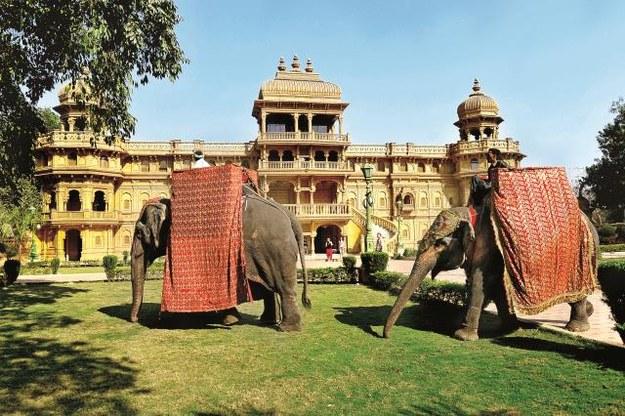 Sceny kręcono m.in. w bollywoodzkich wręcz plenerach Palace de Shaan, 50 km od Bombaju. /AKPA POLSKA PRESS Sp.z o.o.