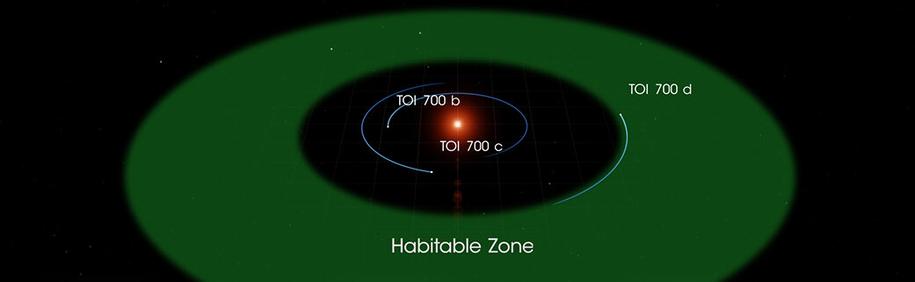 Schemat układu planet wokół czerwonego karła TOI 700 /NASA Goddard Space Flight Center /Materiały prasowe