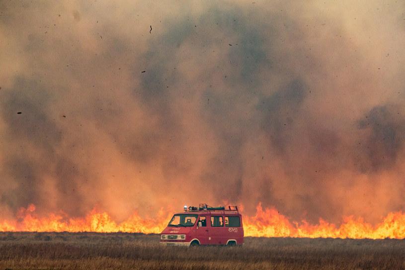 Ściany ognia rozciągały się na wieleset metrów /MAREK MALISZEWSKI/REPORTER /East News