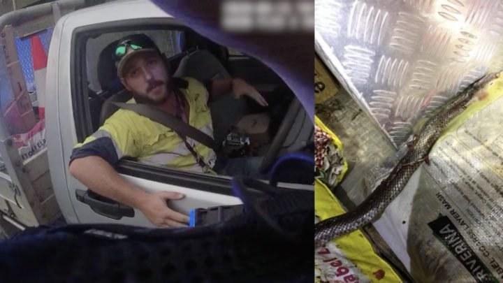 Screeny z filmu australijskiej policji umieszczonego na Facebooku /foto. Queensland Police /