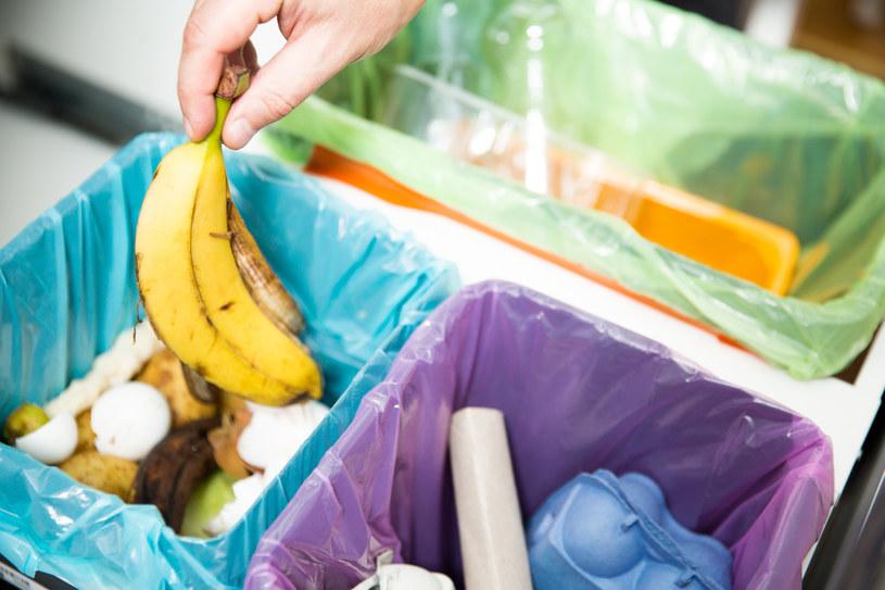 Segregacja odpadów to prosty sposób, w jaki każdy z nas może pomóc przyrodzie /123RF/PICSEL