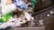 Segregacja śmieci - to nie takie trudne! O czym pamiętać?