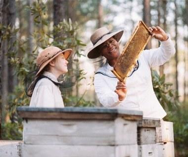 """""""Sekretne życie pszczół"""""""
