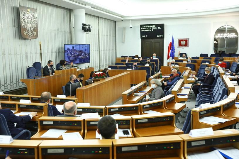 Senatorowie na sali obrad, 28.11 /Rafał Guz /PAP