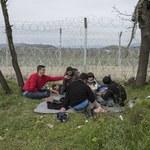 Serbia: 11 osób aresztowanych pod zarzutem przemytu ludzi na Węgry
