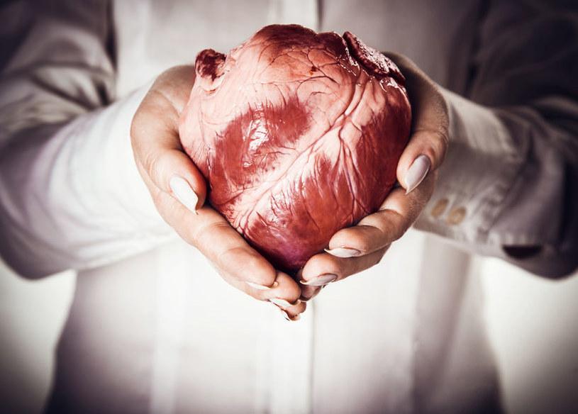 Serce na dłoni - rzadko występują tu nowotwory pierwotne /123RF/PICSEL