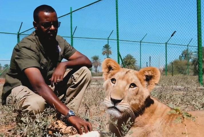 Serce Osmana stanęło, kiedy zobaczył lwy w opłakanym stanie. Musiał działać i to szybko! /Interia/ Facebook