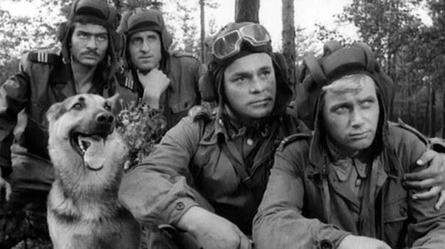 """Serial """"Czterej pancerni i pies"""" był uważnie śledzony przez władze PRL, opowiadał przecież o """"braterstwie broni"""" z towarzyszami radzieckimi. Każda pomyłka i spór były traktowane niemal jak zamach na """"wieczny sojusz"""". /East News/POLFILM"""