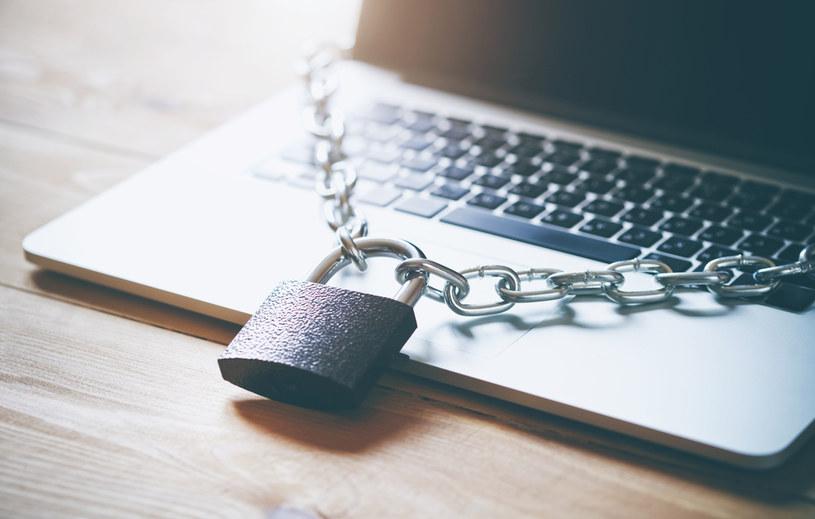 Serwis podatki.gov.pl pozwala uzyskać dane osobowe wybranych użytkowników /123RF/PICSEL