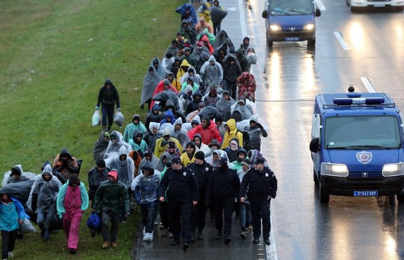 Setka uchodźców przy granicy z Chorwacją /PAP/EPA