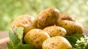 Sezon na młode ziemniaki