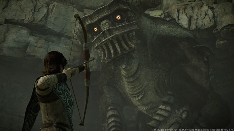 Shadow of the Colossus /materiały prasowe