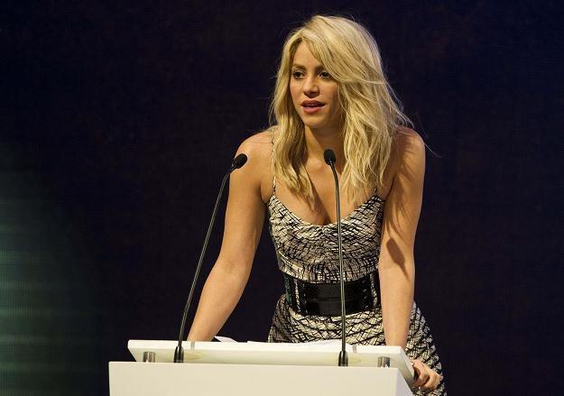 Shakira za swoją posiadłość zapłaciła 3,4 mln dolarów /AFP
