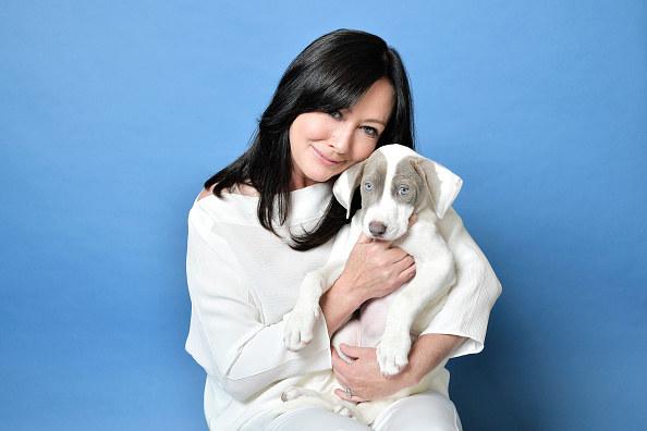 Shannen regularnie wspiera organizacje prozwierzęce - jest wielbicielką psów /Getty Images