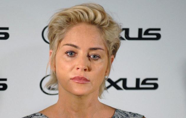 Sharon Stone /fot.Marek Ulatowski  /MWMedia