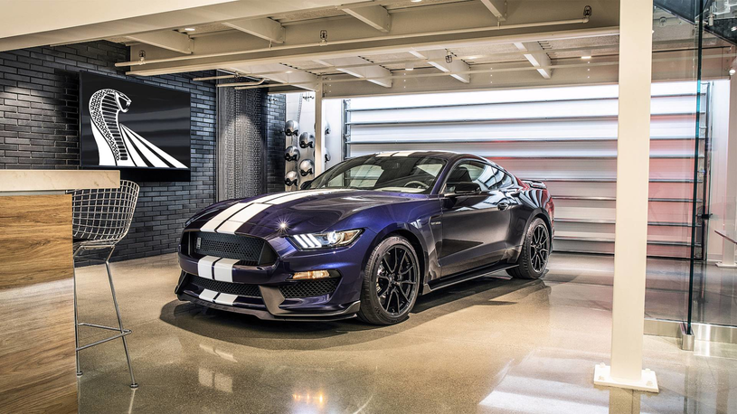 Shelby GT350 /