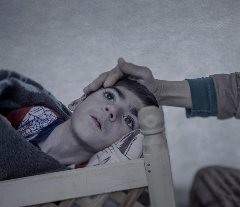 Shiraz, 9 lat /fot.  Magnus Wennman/Aftonbladet/REX Shutterstock /East News