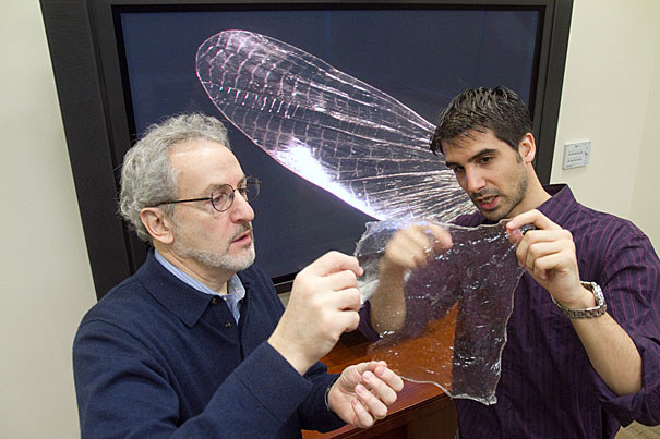 Shrilk - materiał trwały i biodegradowalny /materiały prasowe