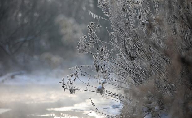 Siarczyste mrozy w nocy, w Bieszczadach o poranku minus 11 stopni. Ale w ciągu dnia… [POGODA]